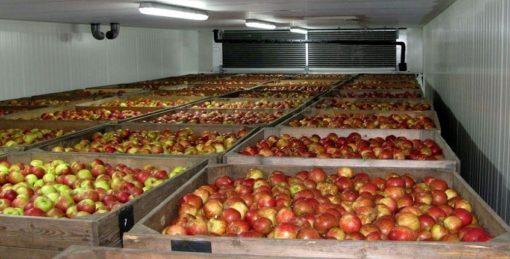 климатическое оборудование для овощехранилища
